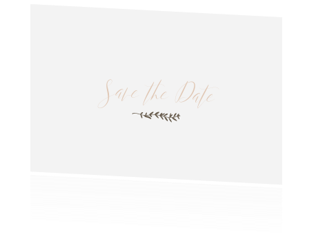 Save the Date pastel takje